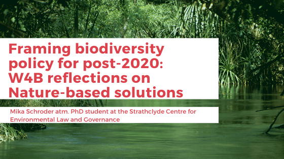 Framing biodiversity policy for post-2020_W4Breflections on Nature-based solutions