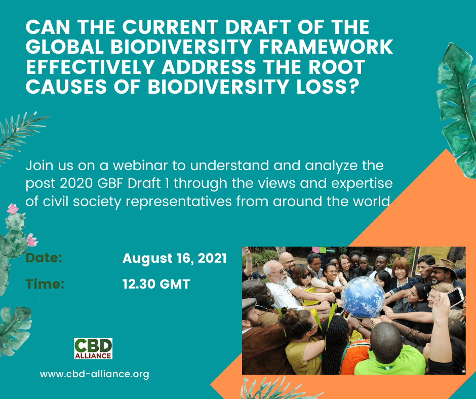 CAN-THE-CURRENT-DRAFT-OF-THE-GLOBAL-BIODIVERSITY-FRAMEWORK-EFFECTIVELY-ADDRESS-THE-ROOT-CAUSES-OF-BIODIVERSITY-LOSS